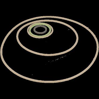 Ledende O-ringe